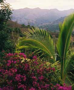 Mountain View, Barrio Mercedes, Costa Rica